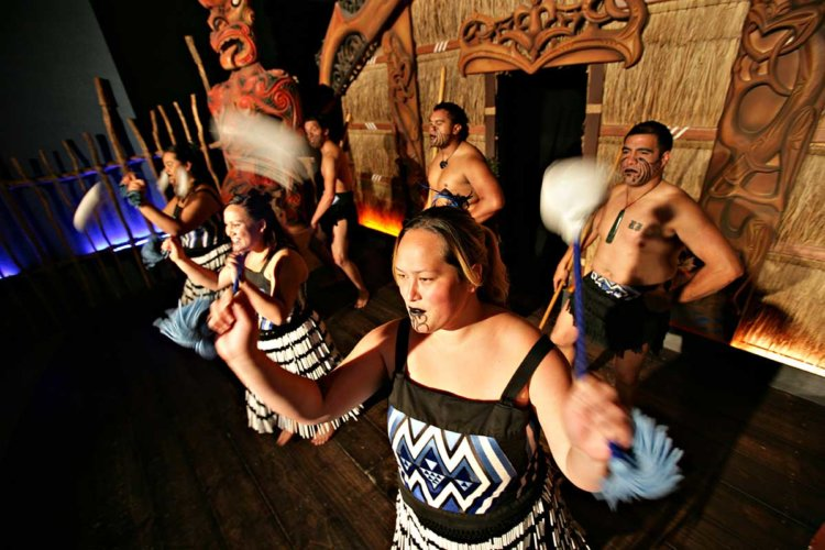 Programs - Maori Haka Show | Professional Education Programs Abroad